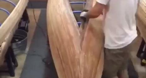 La construction d'un canoë (timelapse)