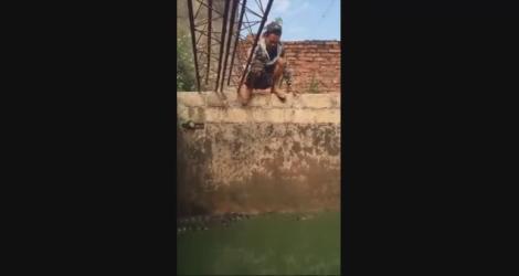Un homme fait trempette dans une fosse d'alligators